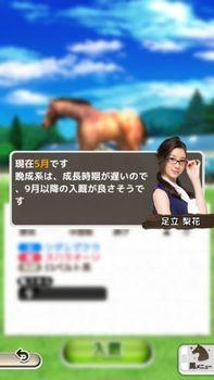 入厩時期(晩成).jpg