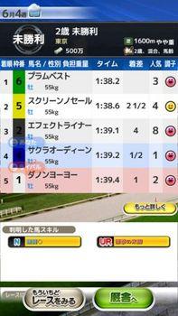 レースで判明.jpg